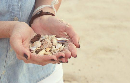 Teilausschnitt einer Person, die am Strand Muscheln in ihren Händen hält